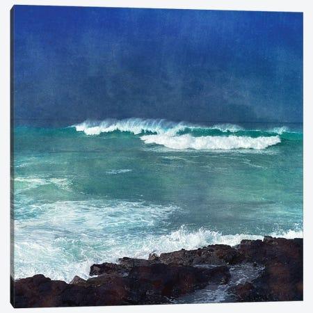Storm Dance I Canvas Print #ZLW7} by Christine Zalewski Art Print