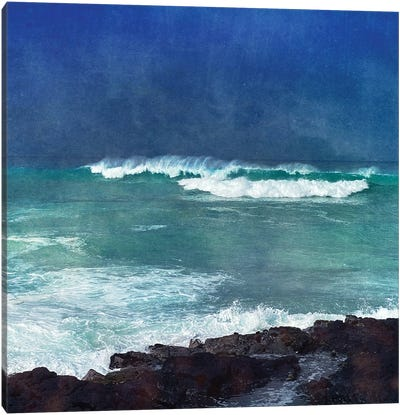 Storm Dance I Canvas Art Print