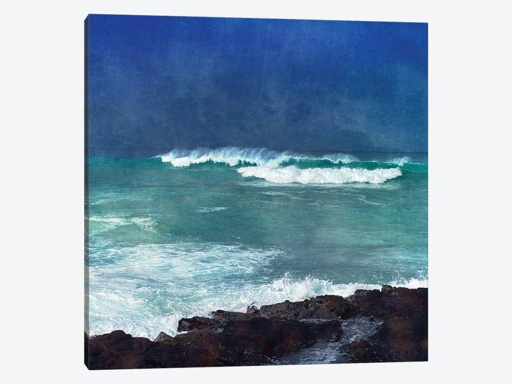 Storm Dance I by Christine Zalewski 1-piece Canvas Wall Art