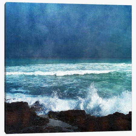 Storm Dance II Canvas Print #ZLW8} by Christine Zalewski Canvas Artwork