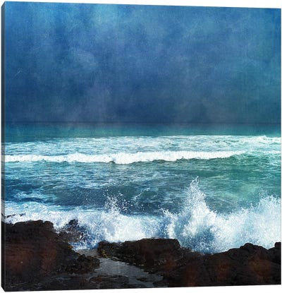 Storm Dance II Canvas Art Print