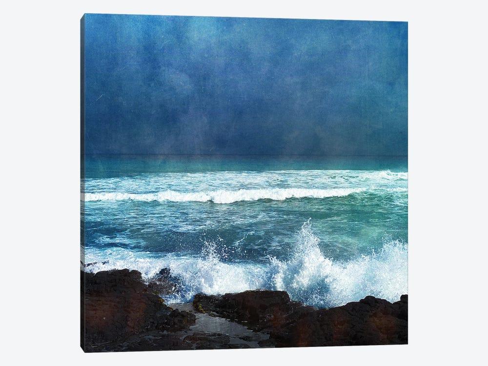 Storm Dance II by Christine Zalewski 1-piece Art Print
