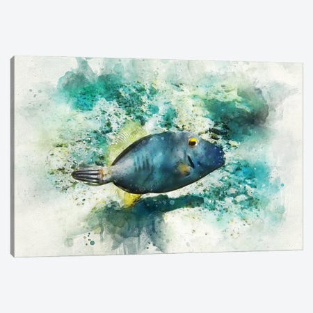 Barred Filefish Watercolor Canvas Print #ZLW9} by Christine Zalewski Canvas Art