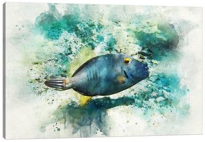 Barred Filefish Watercolor Canvas Art Print