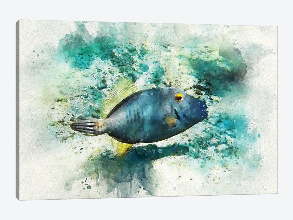 Barred Filefish Watercolor by Christine Zalewski 1-piece Canvas Artwork