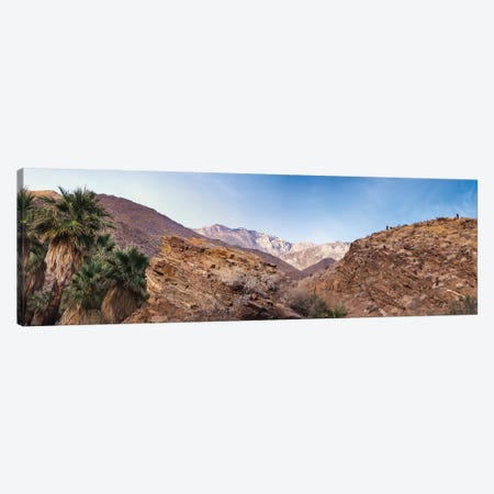 Indian Canyons, Palm Springs, California Canvas Print #ZMB15} by Zandria Muench Beraldo Canvas Print