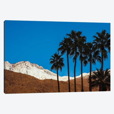 Palm Springs, California Canvas Print #ZMB24} by Zandria Muench Beraldo Canvas Wall Art