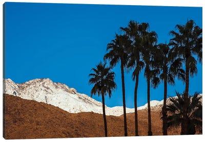 Palm Springs, California Canvas Art Print