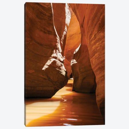 Slot Canyon at Lake Powell NRA, Utah Canvas Print #ZMB2} by Zandria Muench Beraldo Canvas Print