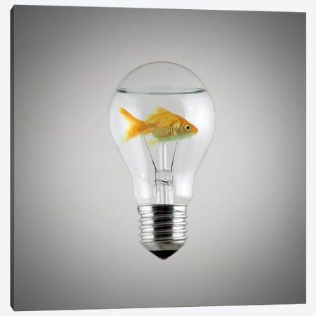 Fish Canvas Print #ZOL19} by Zoltan Toth Art Print