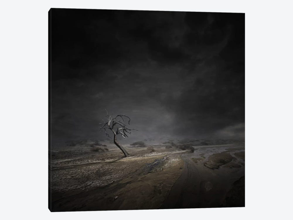 Abandoned by Zoltan Toth 1-piece Canvas Art Print