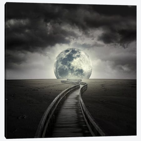 Full Moon Canvas Print #ZOL21} by Zoltan Toth Canvas Artwork