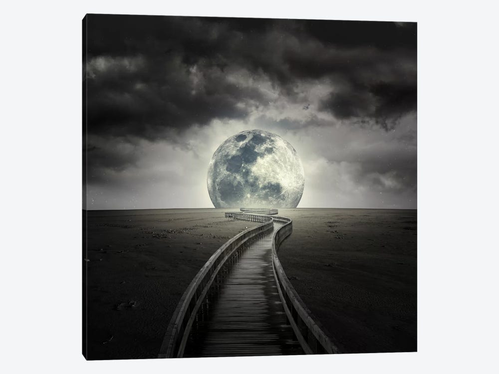 Full Moon by Zoltan Toth 1-piece Canvas Artwork