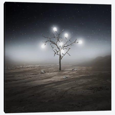 Lights Canvas Print #ZOL27} by Zoltan Toth Canvas Art Print