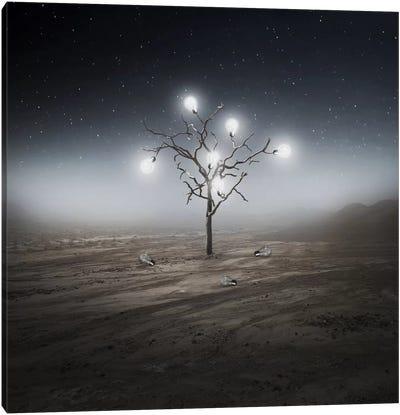 Lights Canvas Art Print