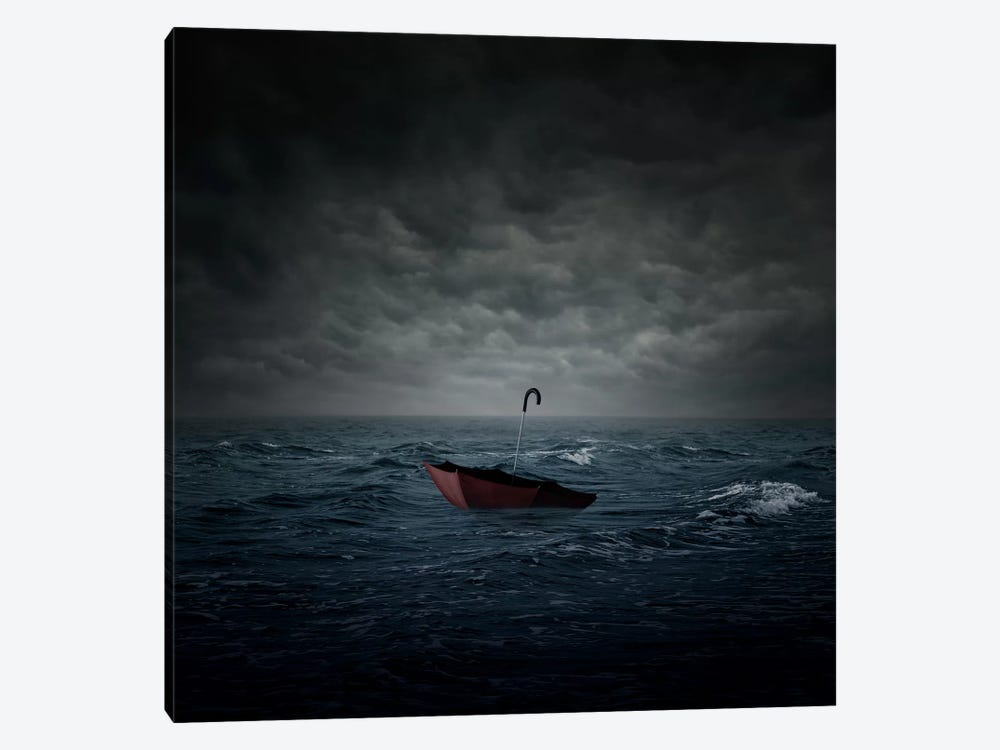 Lost by Zoltan Toth 1-piece Canvas Wall Art