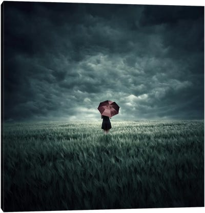 Storm Is Coming Canvas Art Print