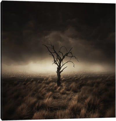 Alone Canvas Print #ZOL4