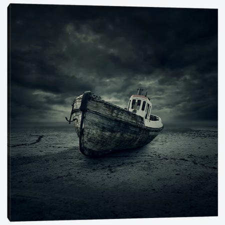 Wreck Canvas Print #ZOL51} by Zoltan Toth Canvas Art Print