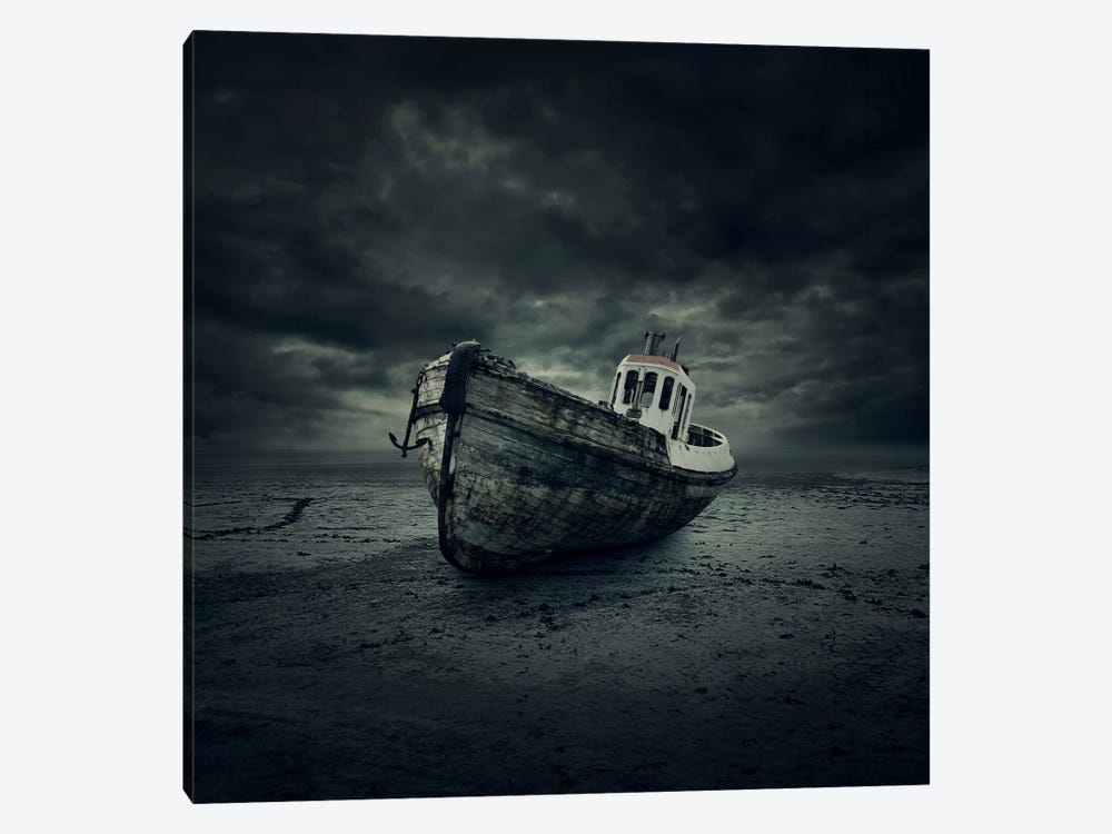 Wreck by Zoltan Toth 1-piece Art Print
