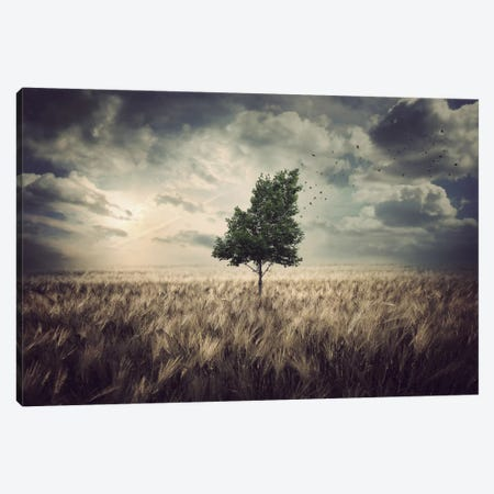 Autumn 3-Piece Canvas #ZOL5} by Zoltan Toth Canvas Wall Art