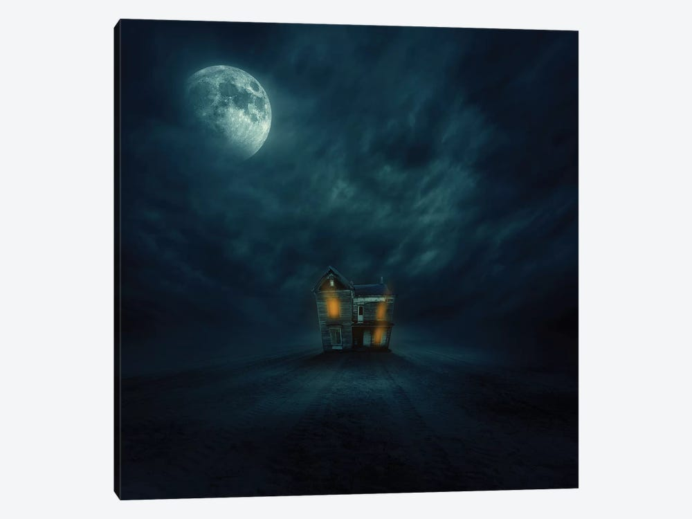 Moonlight by Zoltan Toth 1-piece Canvas Wall Art