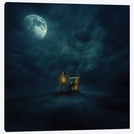 Moonlight 3-Piece Canvas #ZOL65} by Zoltan Toth Canvas Art Print