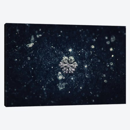 Snowflake Canvas Print #ZOL69} by Zoltan Toth Canvas Artwork