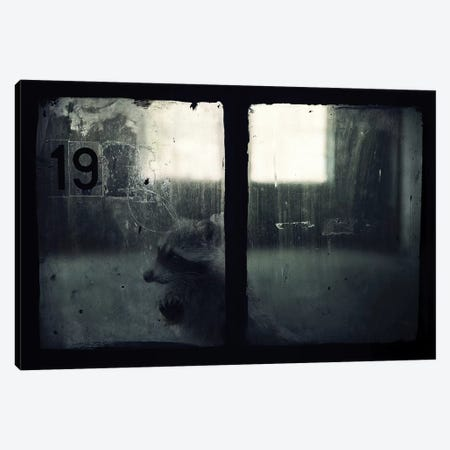 Trapped III 3-Piece Canvas #ZOL74} by Zoltan Toth Canvas Artwork