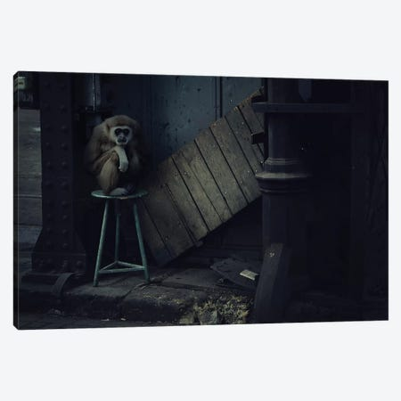 Trapped IV Canvas Print #ZOL75} by Zoltan Toth Canvas Art