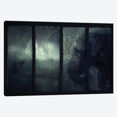 Trapped V Canvas Print #ZOL76} by Zoltan Toth Canvas Artwork