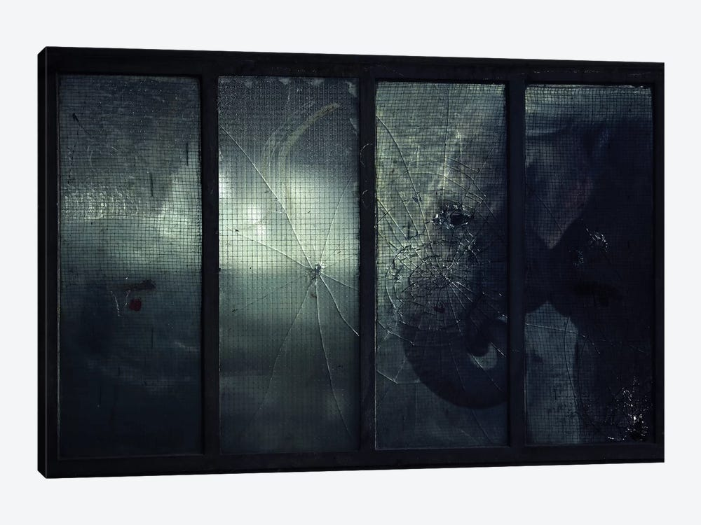 Trapped V by Zoltan Toth 1-piece Canvas Wall Art