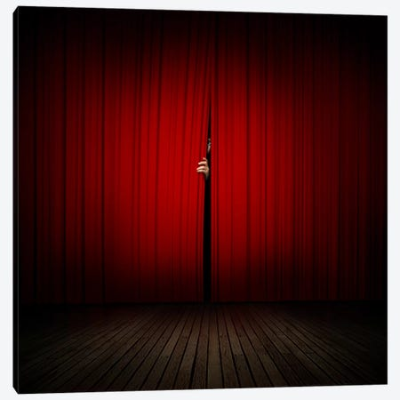 Behind The Curtain Canvas Print #ZOL7} by Zoltan Toth Canvas Art