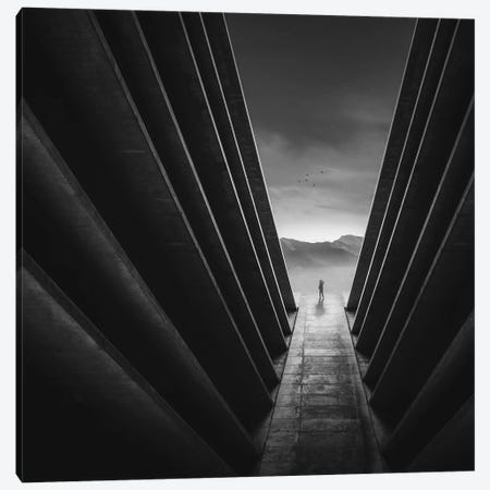 Lines Canvas Print #ZOL83} by Zoltan Toth Canvas Wall Art
