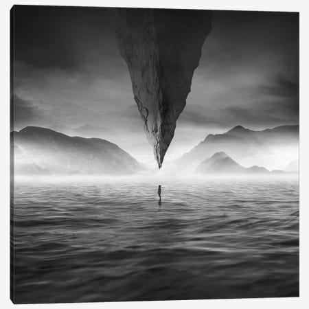 Rock Canvas Print #ZOL85} by Zoltan Toth Canvas Art Print