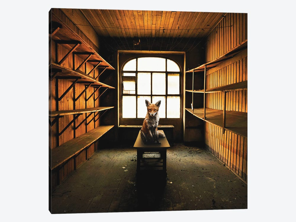 Lost Animals - Series Nr.9 by Zoltan Toth 1-piece Art Print