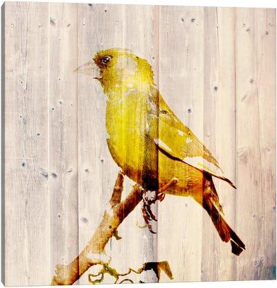 Golden Days Canvas Art Print