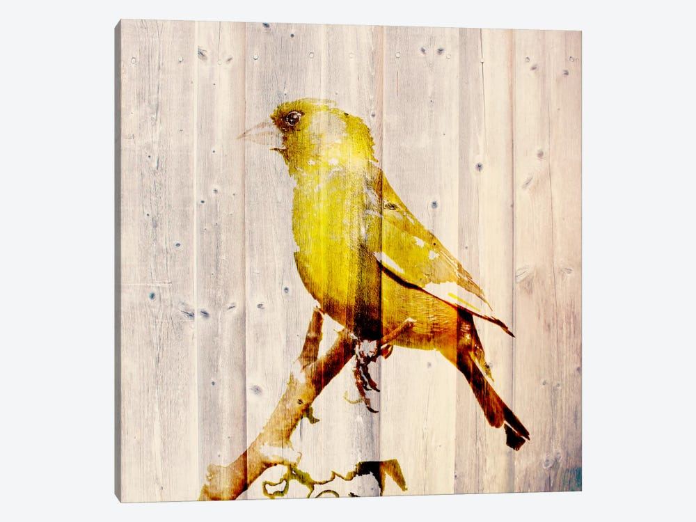 Golden Days by 5by5collective 1-piece Canvas Print