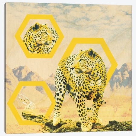 On The Hunt 3-Piece Canvas #ZOO6} by 5by5collective Canvas Print