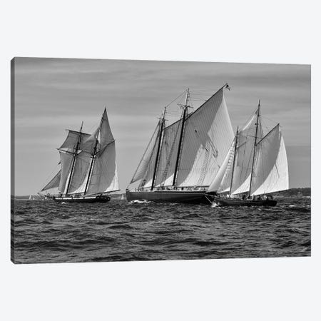 Gloucester Schooner Race In Black And White Canvas Print #ZSC42} by Zoe Schumacher Canvas Art