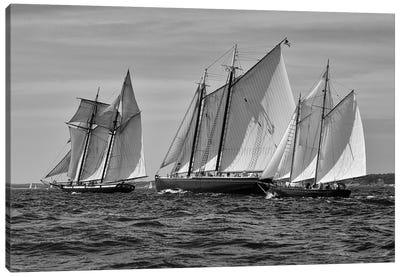 Gloucester Schooner Race In Black And White Canvas Art Print
