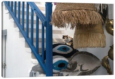 Mykonos Feline Canvas Art Print