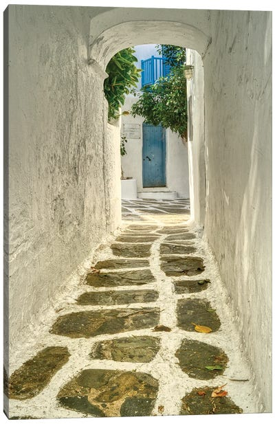 Walkway In Mykonos Canvas Art Print
