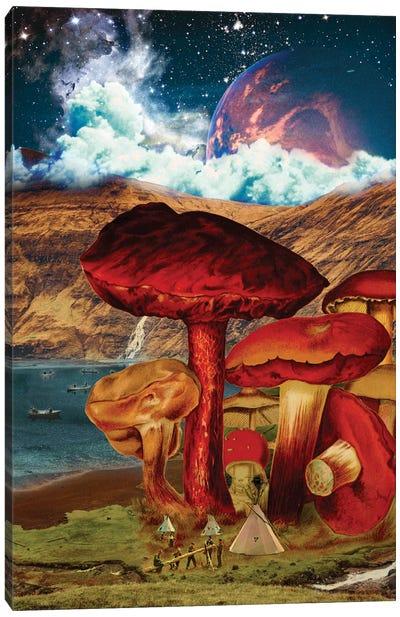 Shroom-Rise Kingdom Canvas Art Print