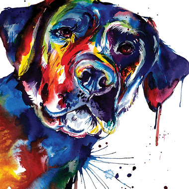 Dogs Art Prints