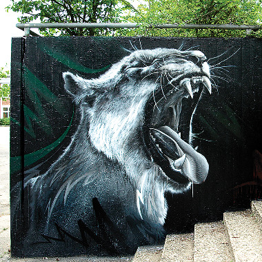 Street Art Canvas Art
