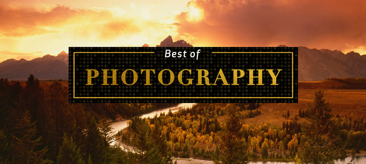 Best of Photography Canvas Art