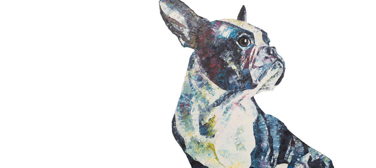 Boston Terriers Canvas Art Prints