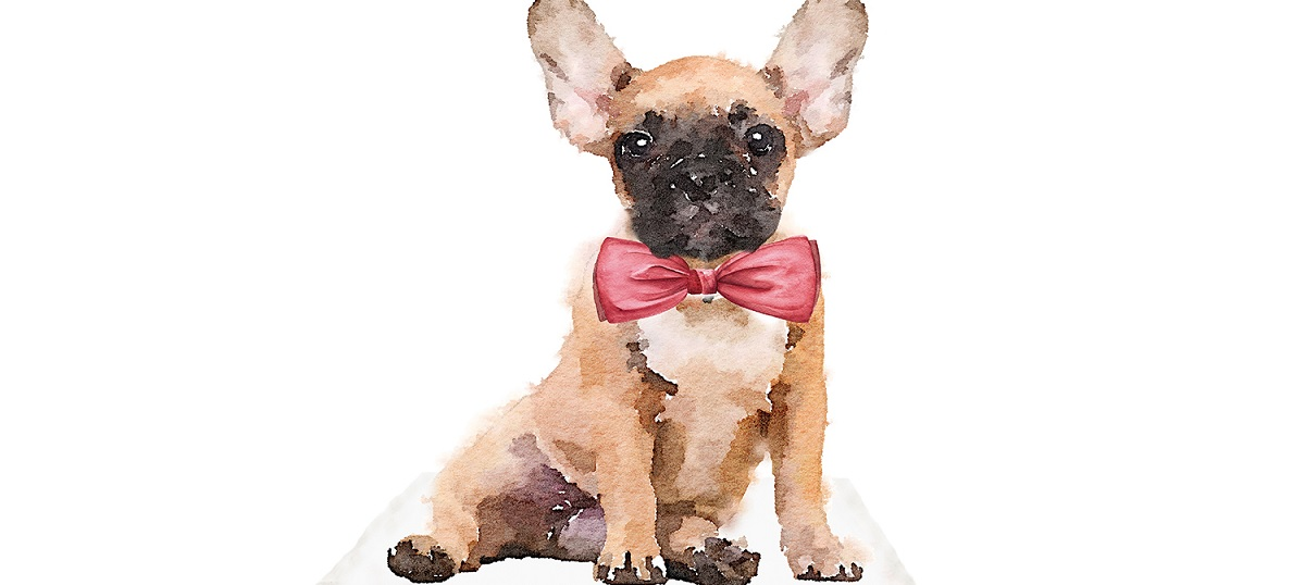 French Bulldogs Canvas Wall Art