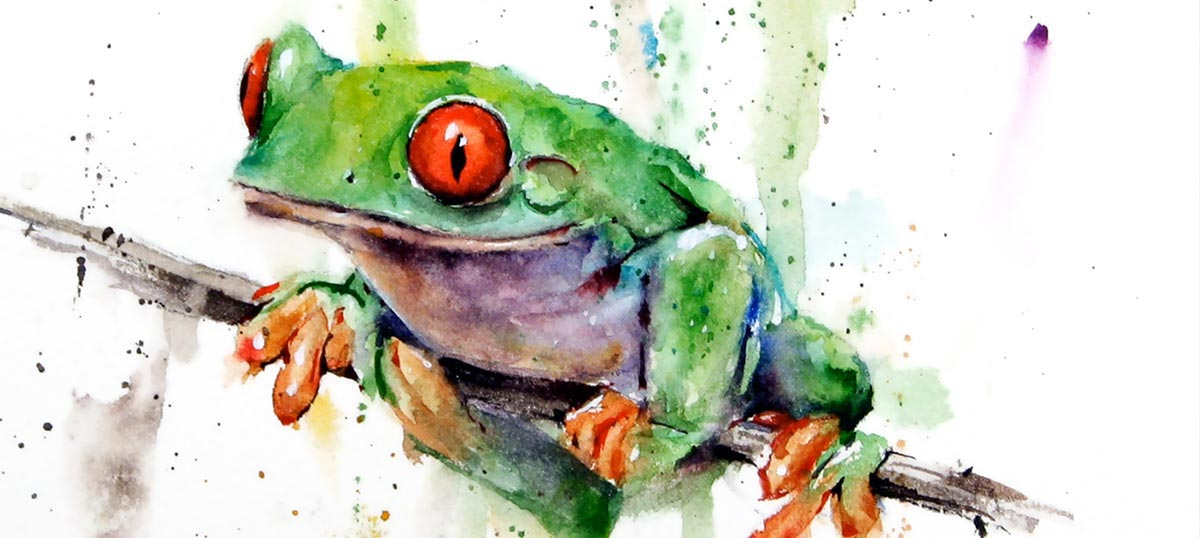 Frogs Canvas Wall Art